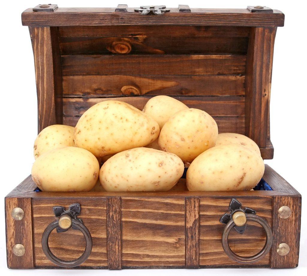 kartupeli kaste